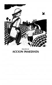 Principio de la acción inmediata