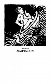 Principio de adaptación